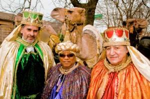 3 kings camel